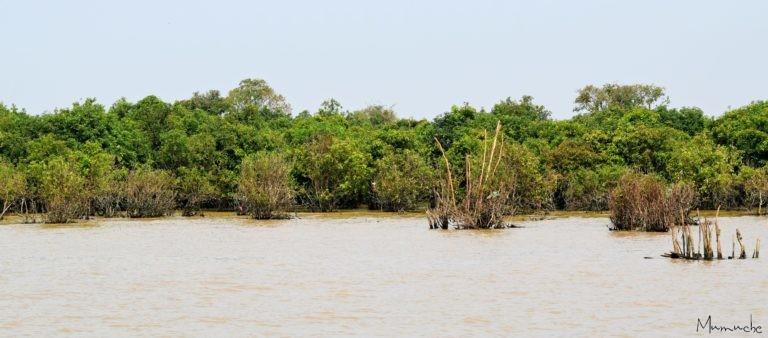 Tonle Sap - Lake