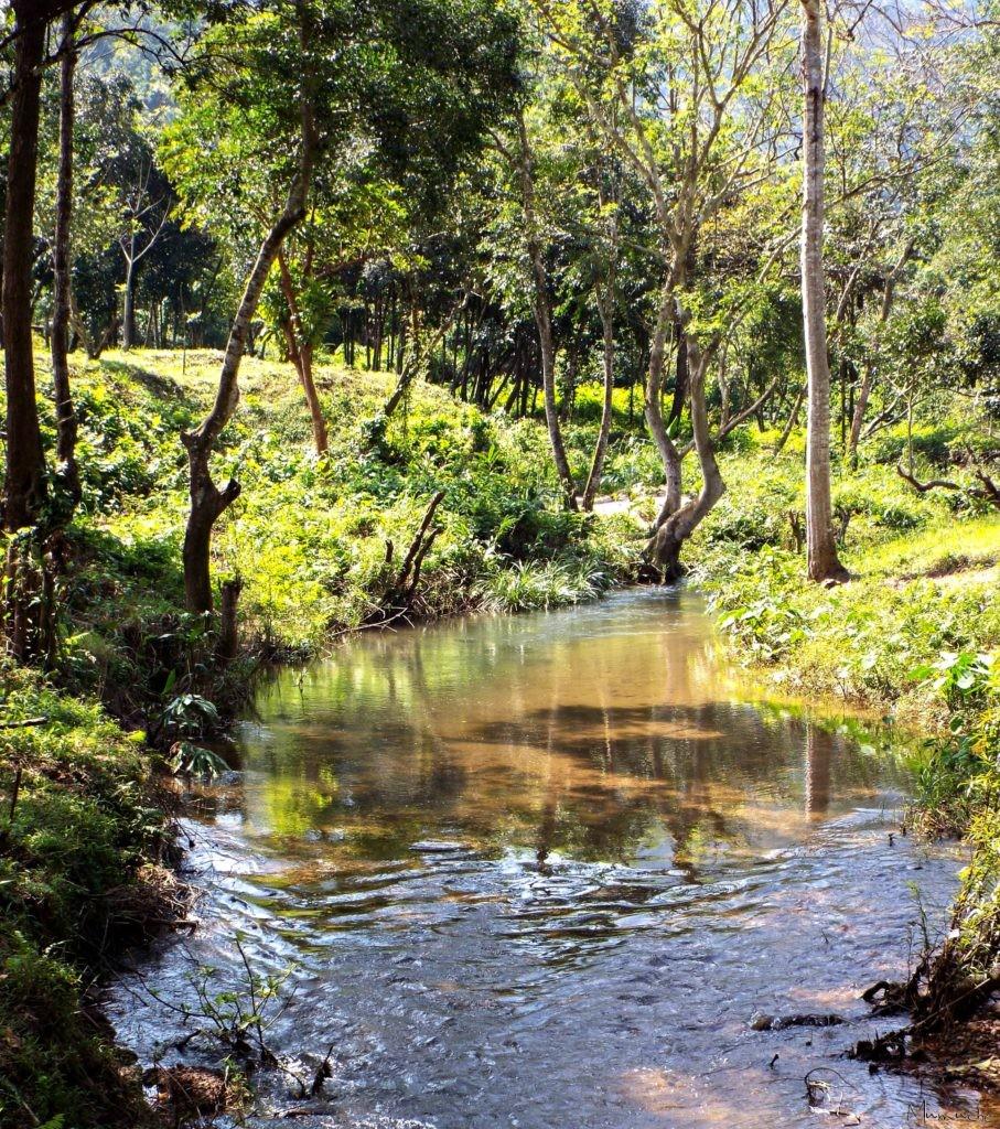Vietnam - My Son - River