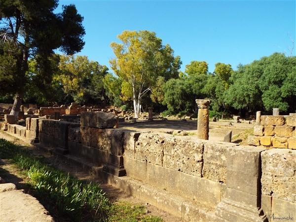 Tipaza - Roman ruins 2