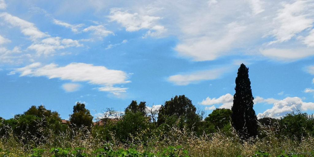 Scenery, Rome